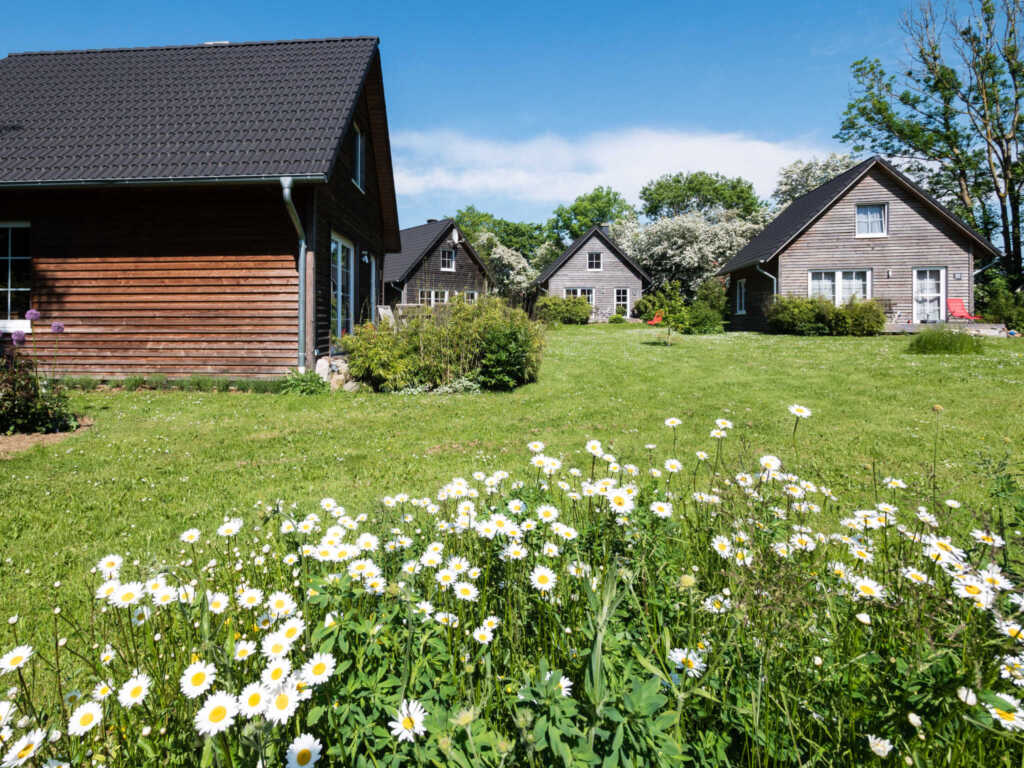 Bei Zingst: Schmidt's Ferienhäuser, Ferienhaus
