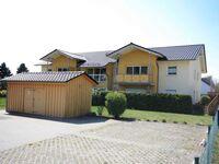 **400 m zum Ostseestrand** F.-L.-Jahnstr., Bj.2009, Seeigel in Koserow (Seebad) - kleines Detailbild