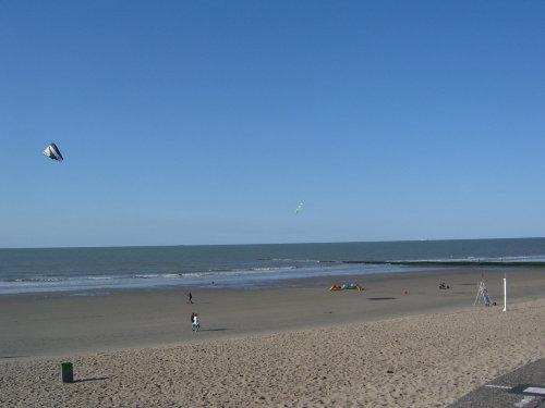 Strandabschnitt in den Morgenstunden