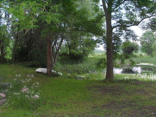 Idylle am Teich hinter dem Haus