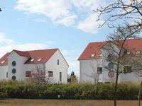 05-W2-1-Strandperle, Strandperle in Kölpinsee - Usedom - kleines Detailbild