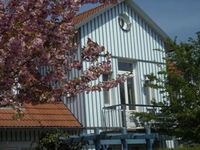 Ferienwohnung  Döbbelin in Prerow (Ostseebad) - kleines Detailbild