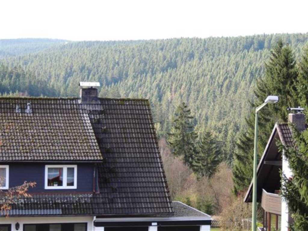 Ferienwohnung Falke B-I-3-7