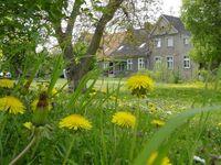 Eine kleine Landpartie..., Ferien im Landhaus in Trieplatz - kleines Detailbild