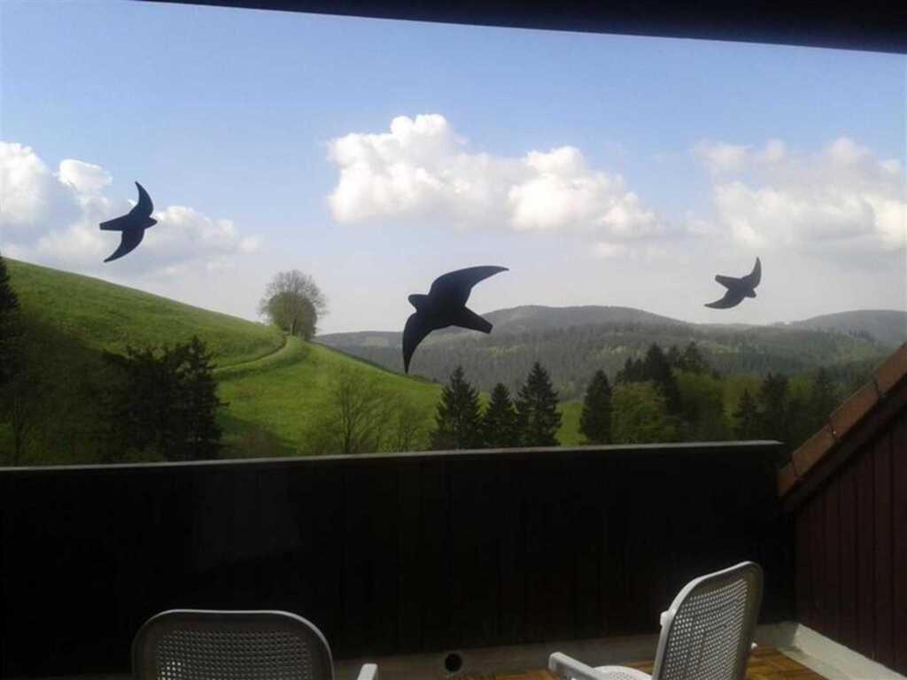 Ferienwohnung Schönwald