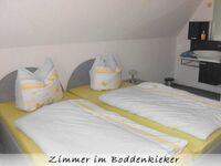 Ferienwohnung Boddenkieker in Dreschvitz - kleines Detailbild
