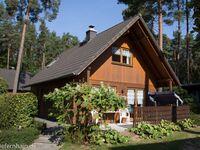 Feriensiedlung Kiefernhain, Ferienhaus 'Kieferngrund' 1 in Krakow am See - kleines Detailbild