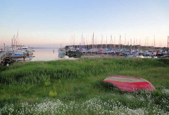 Ferienhaus am Zeltplatz Rerik, M: 3-Raum-Fewo mit