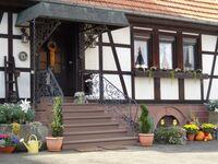 Lauerbacher Hof, Wohnung 2 in Erbach im Odenwald-Lauerbach - kleines Detailbild