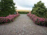 Ferienwohnungen im Bauernhaus - Objekt 44365, Wohnung IV in Papendorf - kleines Detailbild