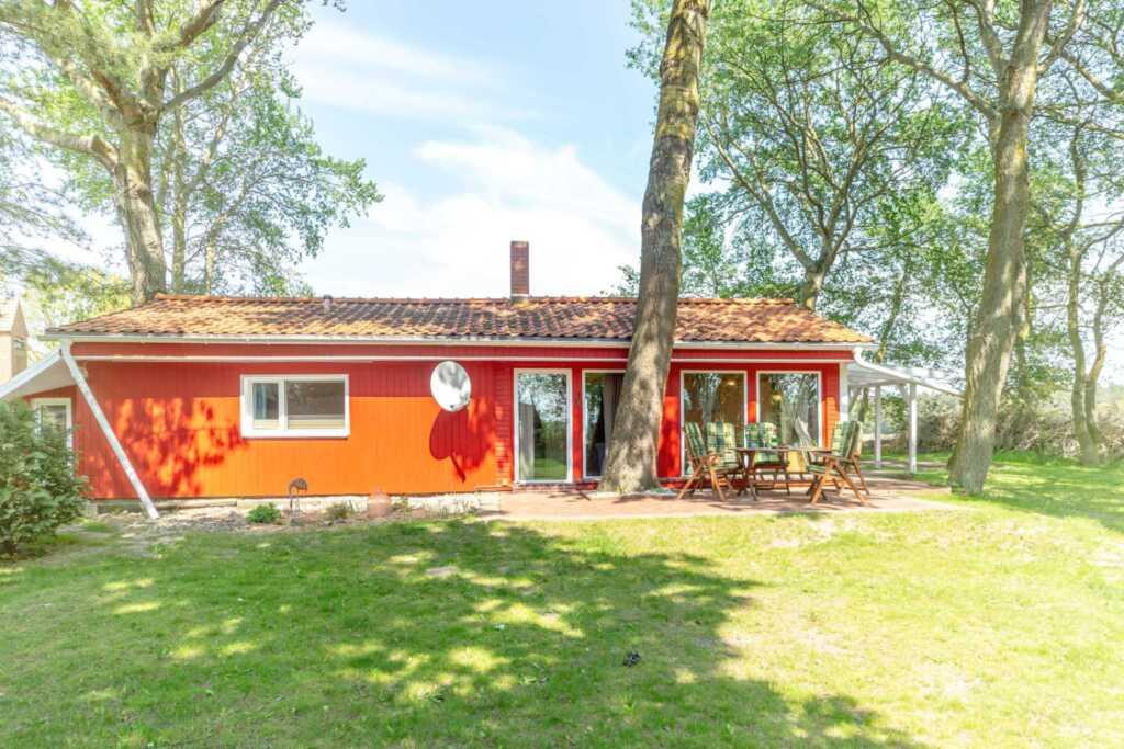 Ferienhäuser Suhrendorf, grünes Ferienhaus