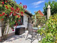 Ferienhaus Malchow SEE 7751, SEE 7751 in Malchow - kleines Detailbild