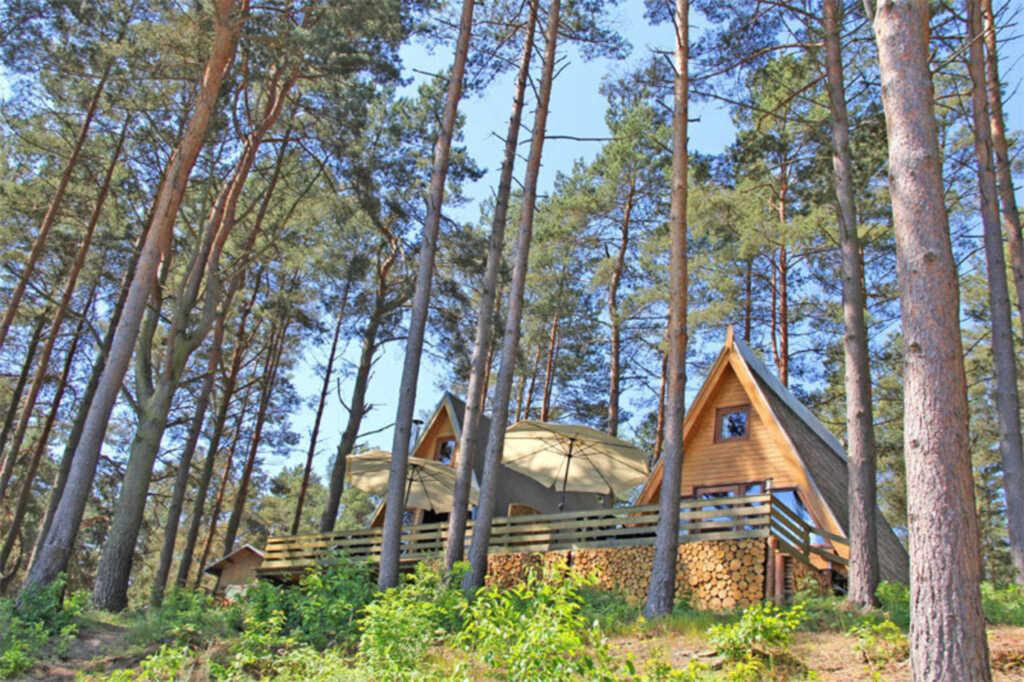 Ferienhäuser Dorf Zechlin SEE 7760, SEE 7763 - Fin