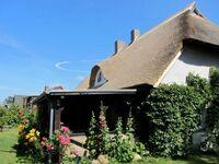 Künstlerhaus Kora mit Villa Ilsebill und Charlottes Landlust, Villa Ilsebill in Ribnitz-Damgarten OT Klockenhagen - kleines Detailbild