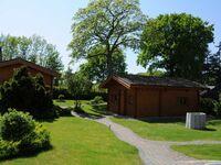holiweek, Haus Elvis in Niendorf-Ostsee - kleines Detailbild