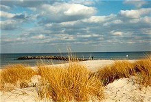 Der Strand in ca. 300 m. Entfernung....