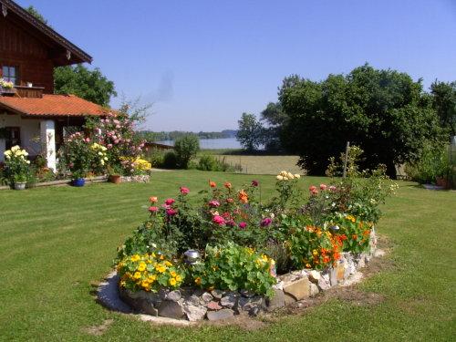 Sommerstimmung im Garten mit Seeblick