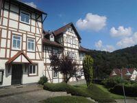 Ferienwohnung 'Der Falkenhorst' in Bad Sachsa - kleines Detailbild