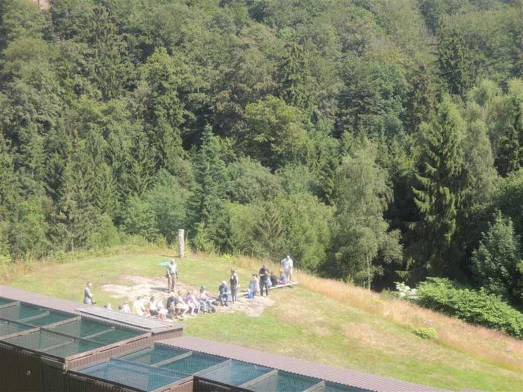 Ferienwohnung 'Der Falkenhorst'