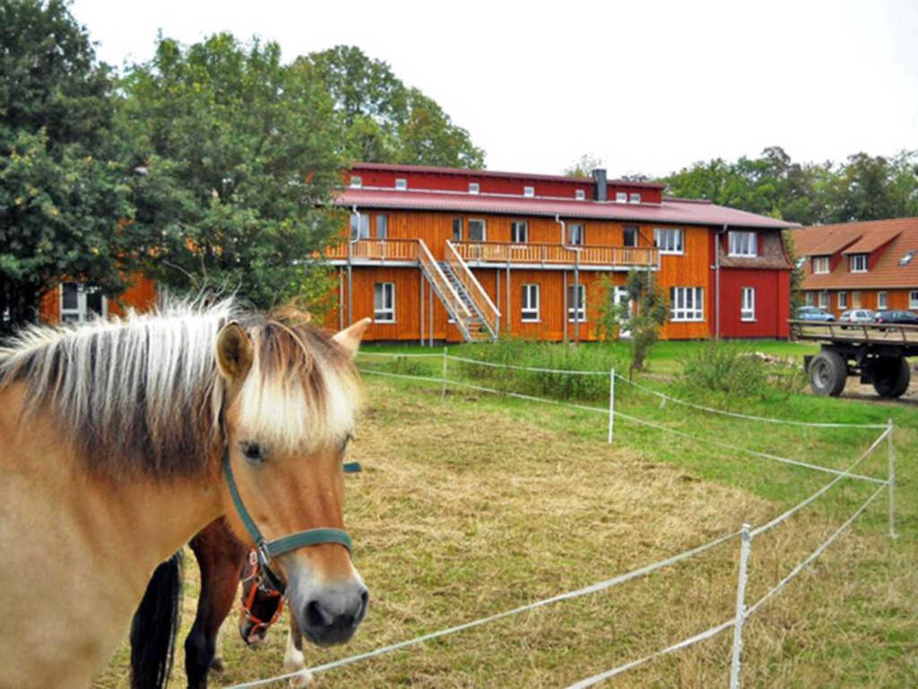 Urlaub auf dem Biohof, Ferienwohnung gelb