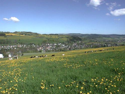 Poehla im Erzgebirge