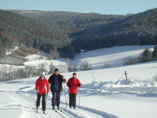 auf dem Skiwanderweg in Poehla
