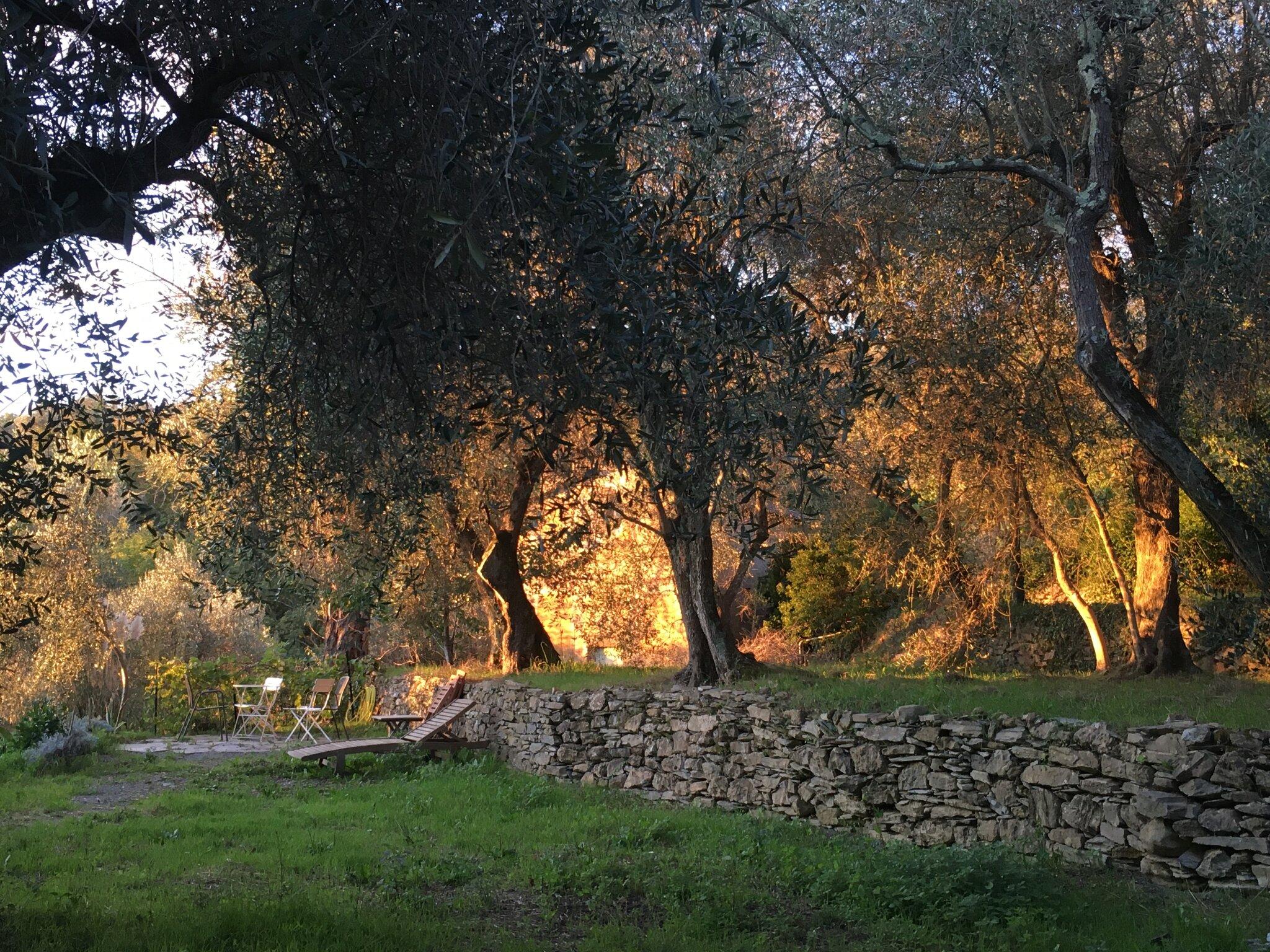 App. Oliva (links) / Casa Limone(rechts)
