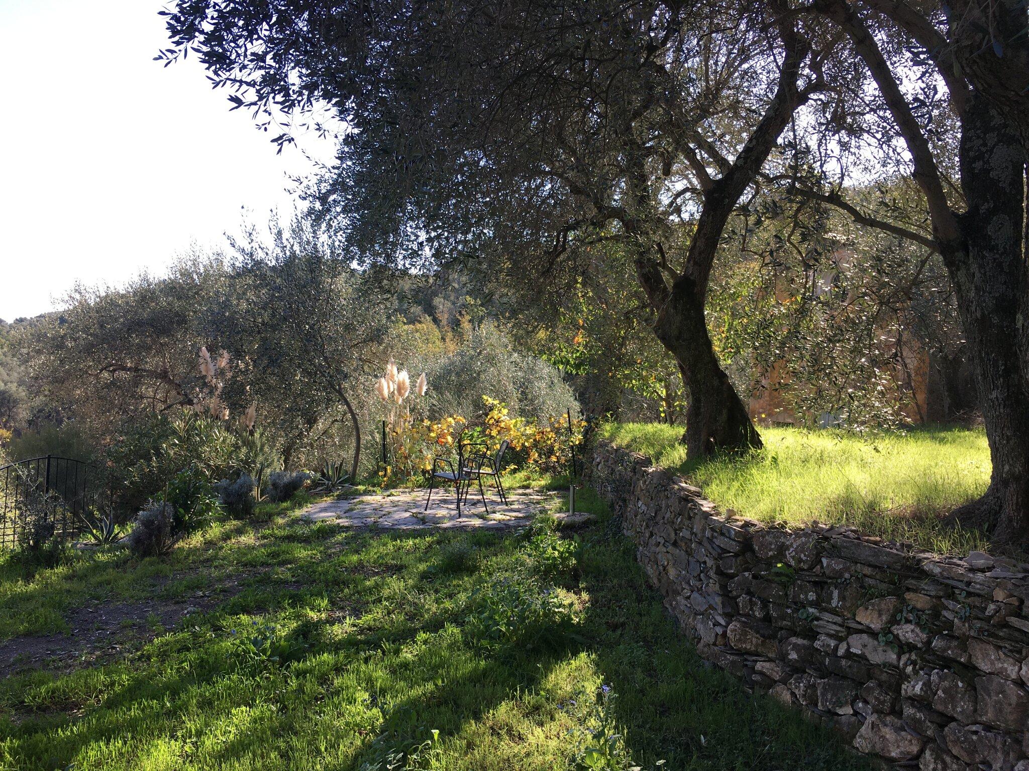 Blick in den Garten Richtung Auffahrt