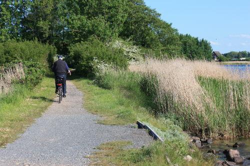 Radfahren an der Schlei