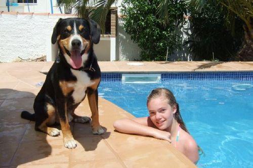 Familienspaß mit Hund