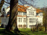 Gutshaus Stubbendorf F 770, 5. Ferienwohnung  ' Freiraum ' (2-Raum) in Stubbendorf - kleines Detailbild
