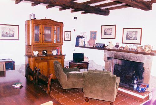 Wohnzimmer mit Kamin / SAT-tv