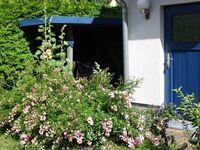 Ferienwohnung in Ralswiek  - großzügig und komfortabel in Ralswiek auf Rügen - kleines Detailbild