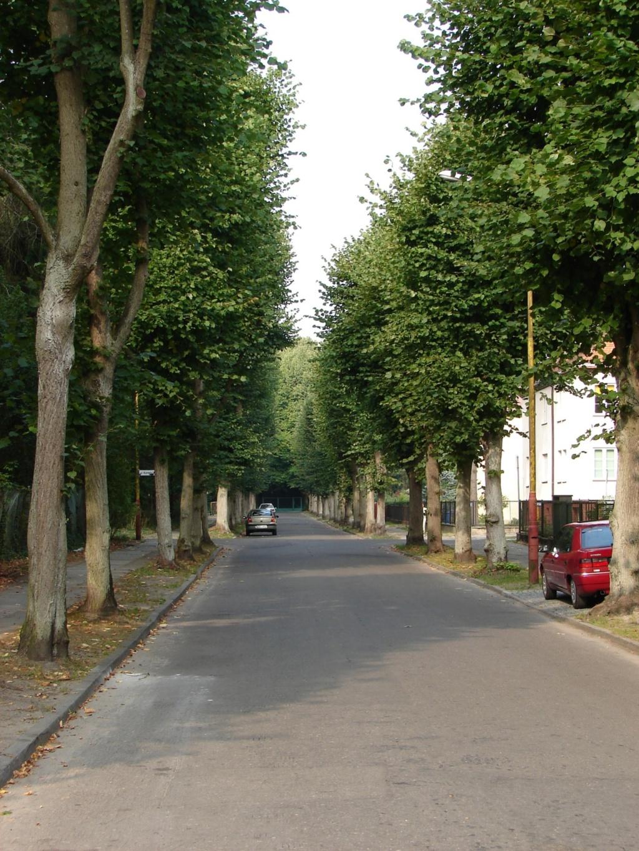 Marinos (M2), M2