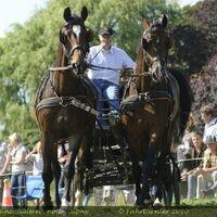 Vermieter: Dirk Herrmann mit seinen Pferden