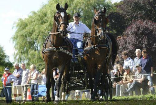 Dirk Herrmann mit seinen Pferden