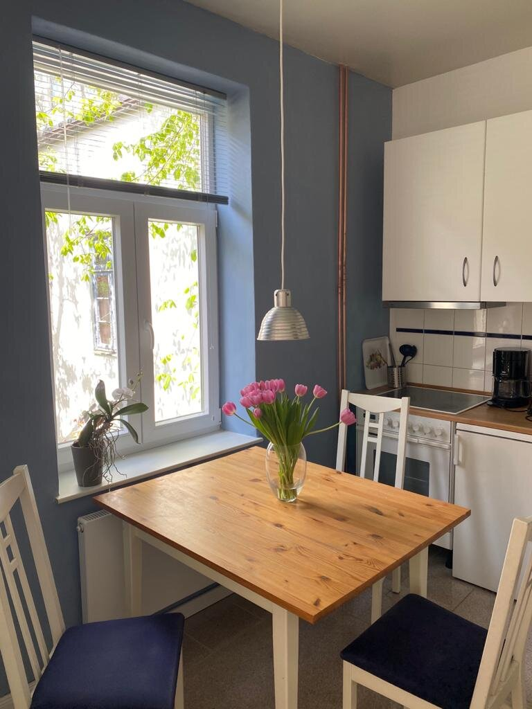 Blick aus Küche ins Wohn/Schlafzimmer