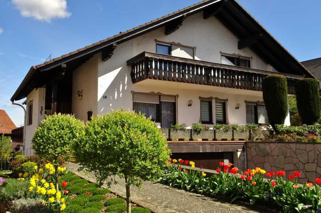 Gästehaus Braun, Appartement 1