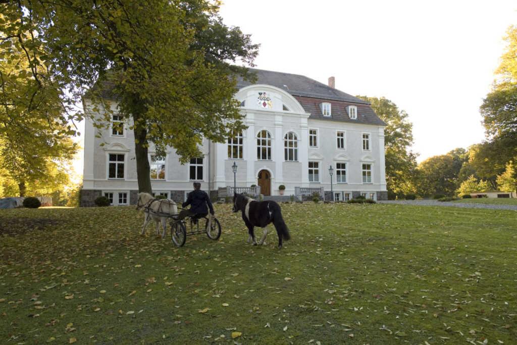Schloss Zinzow, Fewo 3 (2-Raumfewo 65 m²)