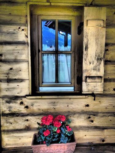 Zusatzbild Nr. 13 von Ferienwohnungen Zugspitze - Almhütte