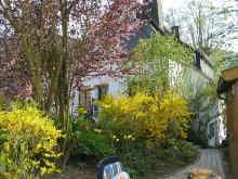 Zusatzbild Nr. 09 von Ferienwohnung Sternberg - Wohnung Berg