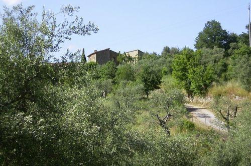 Auffahrt nach Scopetellino
