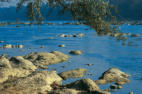 Bad Bellingen am Rhein