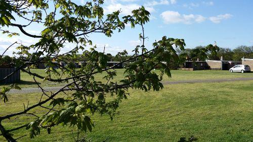 Umgebung von Bungalowpark De Hasecamer