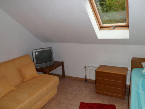 Das Einzelzimmer +Schlafsofa+TV