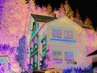 Haus Gruber - Fam. Gewessler, Ferienwohnung 2-4 in Altaussee - kleines Detailbild