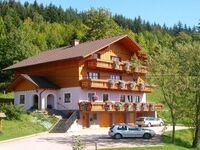 Familie Steinbrecher, Große  Ferienwohnung 2-5 in Bad Mitterndorf - kleines Detailbild
