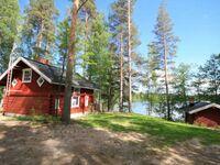 Ferienhaus L197 in Konnevesi - kleines Detailbild