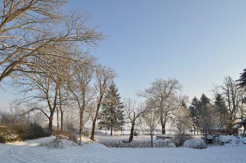 Winter - Hofbild