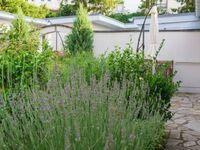Refugium Erholung am Meer, Refugium 1 in Zinnowitz (Seebad) - kleines Detailbild